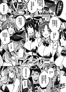 中国漫画 女王 的小兔子, big breasts , bunny girl  bunny-girl